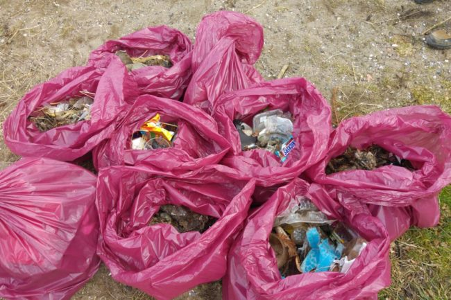 bags of rubbish collected on beach